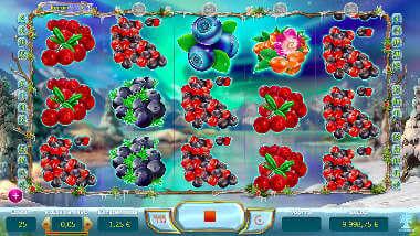Winter Berries kolikkopeli